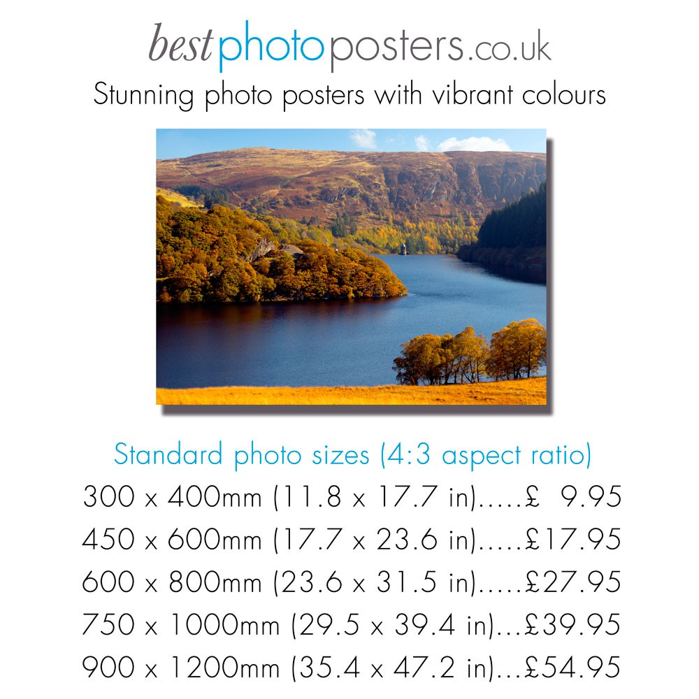 Poster size prints from your pics