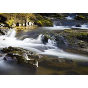 Stream through Brecon Beacons
