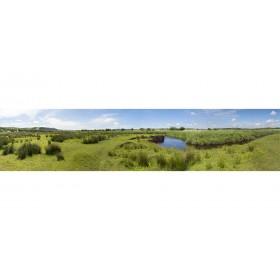 Cors Caron Summer - Panoramic Landscape