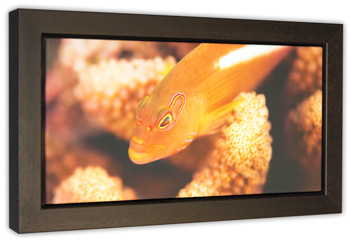 framed canvas prints floater frame box frame